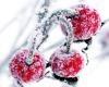 Cherry Menthol E-Liquid