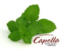 Spearmint Capella