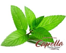 Peppermint Capella