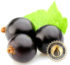 Blackcurrant Inawera Flavour Concentrate