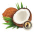 Coconut Inawera Flavour Concentrate