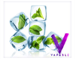 vapable cool mint