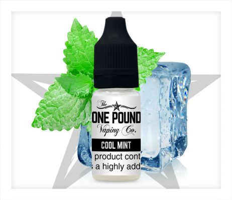 Cool-Mint_One-Pound-Vape-E-liquid_Product-Image.jpg