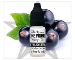 Juicy-Blackcurrant_One-Pound-Vape-E-liquid_Product-Image.jpg