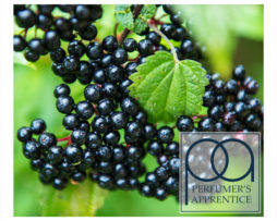 Product-Image_PA_Elderberry