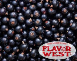 Blackcurrant-Product-Image
